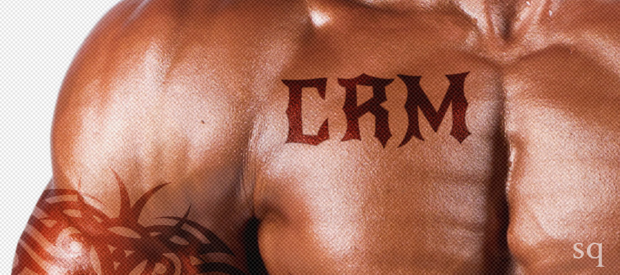 CRM and Bodybuilding: 5 Ways to Flex Your Company's Muscles